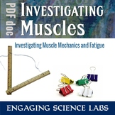 Investigating Muscles—2 Experiments on Muscle Fatigue and Action—Writing Prompts