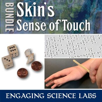 Investigating Nerves—3 Experiments on Touch Sensitivity—Writing Prompts