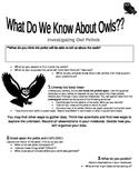 Investigating Owl Pellets