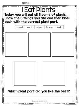 Plant Unit:  Plant Parts, Life Cycle, Journal