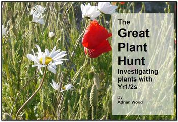 Investigating Plants and how they grow - The Great Plant Hunt