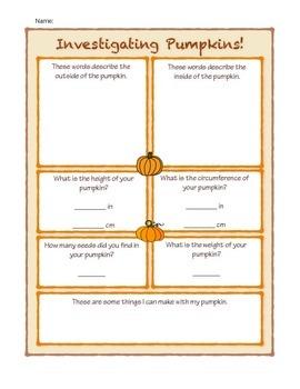 Investigating Autumn Pumpkins!