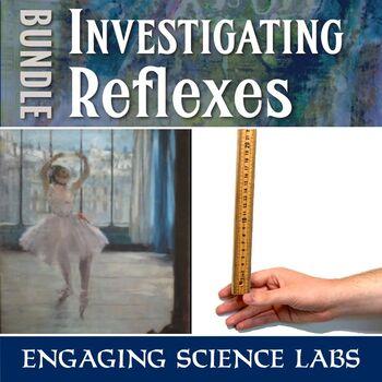 Investigating Reflexes & Reaction Time—2 Science Experimen