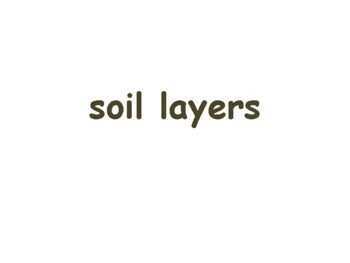 Investigating Soil Flashcards - task cards, study guide, state exam prep