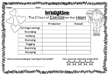 Investigation sheet: effect of exercise on the heart