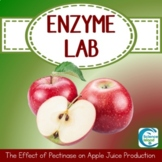 Enzyme Lab: The Effect of Pectinase on the Production of Apple Juice