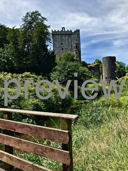 Ireland Castle #3