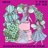 Iris Flower Girl