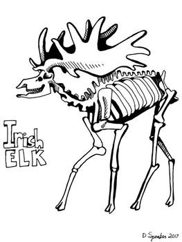 Irish Elk Coloring Page