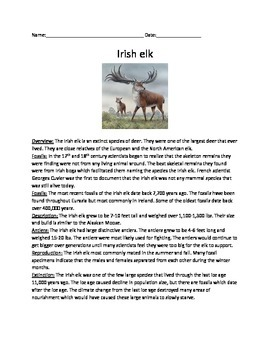 Irish Elk - Extinct - Review Article Questions Vocabulary Word Search PDF