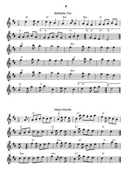 Irish Music - Celtic Cats Tunebook #2