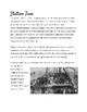 Irish and Chinese Immigration (1800-1900's) Primary Resource Stations Activity