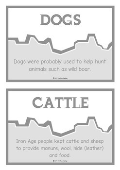Iron Age Fact Cards