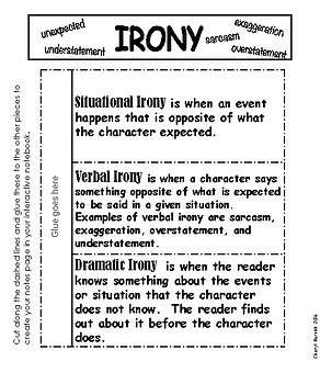 Irony Interactive Notebook Pages