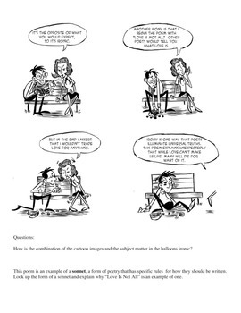 Edna St. Vincent Millay Explains Irony: Poetry Comics Activities Included