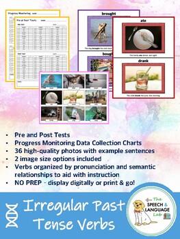 Irregular Past Tense Verbs (pre/post tests, progress monitoring charts, 2 sizes)