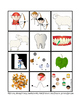 Irregular Plural Cards