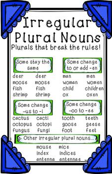 Irregular Plural Noun Anchor Chart by Erin L Martin | TpT