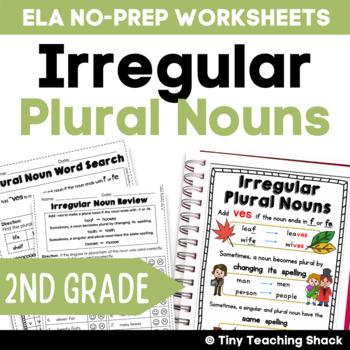 Irregular Plural Noun NO PREP Practice Sheets L.2.1.b