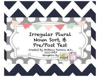 Irregular Plural Noun Sort & pre/post test