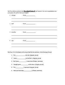 Irregular Plural Nouns Assessment - Test, Quiz, Study Guide, or Practice