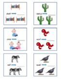 Irregular Plural Nouns Bundle
