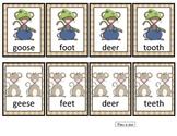 Irregular Plural Nouns  Matching Card Game