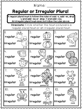 Irregular Plural Nouns - Print and Go Unit by Erin L Martin | TpT