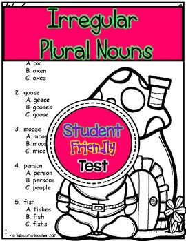 Irregular Plural Nouns Test