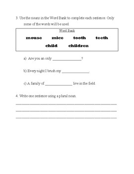 Irregular Plural Nouns Test or Worksheet