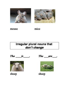 ESL/ELD Irregular Plural Nouns Without S