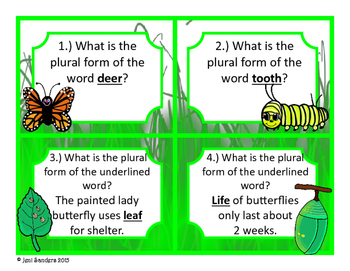 Irregular Plural Nouns with Butterfly Life Cycle Differentiated Small Groups