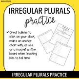 Irregular Plurals Practice