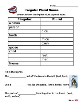 Irregular Plurals Spelling Worksheet