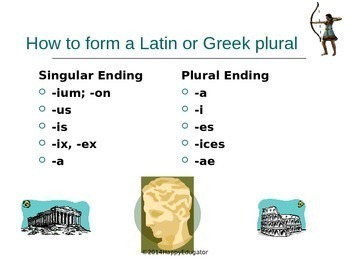 Spelling Irregular Plurals - Latin and Greek Plural Forms