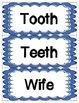 Irregular Plurals Word Wall