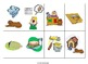 Irregular Plurals and Past Tense Contextualized Lessons