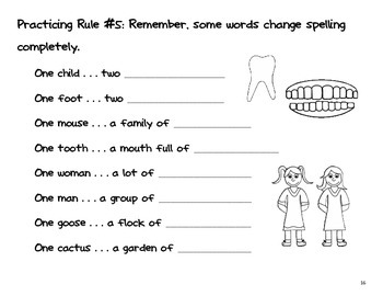 Irregular Plurals (student practice booklet, rule posters and more)
