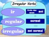 Irregular Verbs Flipchart