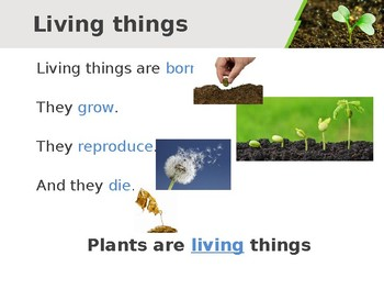 Plants for EFL students
