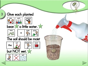 Is Air Important for Plant Growth? - Animated Step-by-Step Science - SymbolStix