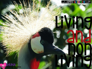 Is It Alive? {A Unit on Living and Nonliving Things for Little People}
