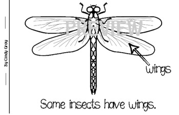 Is This An Insect? Student Book