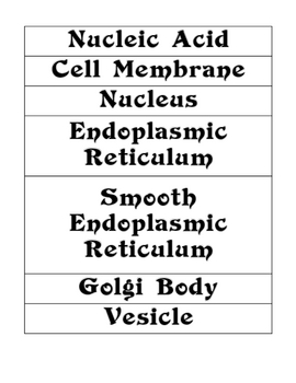 Is it Living and Cells Word Wall Vocabulary