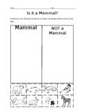 Is it a Mammal? Sort