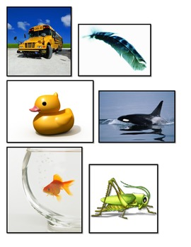 Is it heavy or light? Properties of objects size mass SCIE