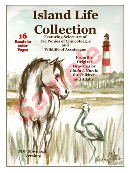 Island Life Collection Coloring Pages  Ponies of Chincoteague VA