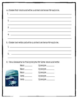 Island of Blue Dolphins Novel Unit