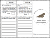 Island of the Blue Dolphins - 5th Grade Reading Street