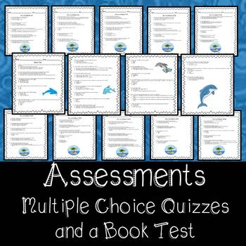 Island of the Blue Dolphins Assessment and Vocabulary
